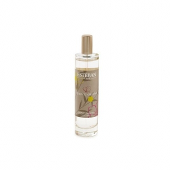 Esprit de the - Estéban Spray Duftzerstäuber Raumspray 50 ml Esteban