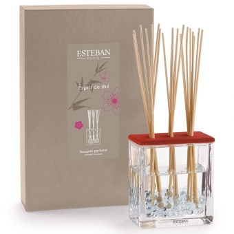 Esprit de the Estéban Diffuser 250ml Bouquet parfumé Triptyque, Raumduft Boukett