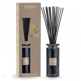 Esprit de the - Esteban Diffuser 75 ml Bouquet parfumé Initial, Raumduft Boukett